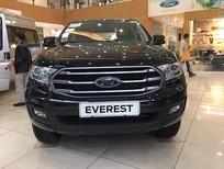 Bán Ford Everest Everest Ambiente 2018, màu đen, nhập khẩu