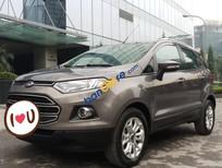 Bán Ford EcoSport Titanium 1.5AT năm sản xuất 2016, màu nâu