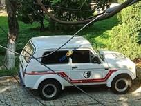 Bán Lada Niva1600 1.6 MT trước năm 1990, màu trắng, xe nhập
