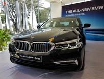 Bán ô tô BMW 5 Series 530i sản xuất năm 2019, màu đen, nhập khẩu nguyên chiếc