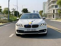 Cần bán xe cũ BMW 5 Series 520i đời 2015, màu trắng