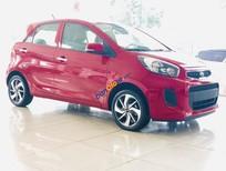Cần bán xe Kia Morning 1.25 EX năm 2019, màu đỏ, giá tốt