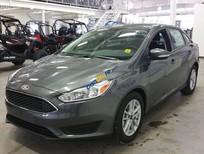 Cần bán Ford Focus 1.5L Titanium năm sản xuất 2019, màu xám