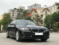 Bán BMW 5 Series 520i năm 2016, màu xám, xe nhập