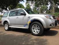 Cần bán Ford Everest năm 2014, màu bạc còn mới