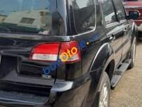 Bán ô tô Ford Escape sản xuất 2009, mức tiêu hao nhiên liệu cũng hợp lý đi phố tầm 11L