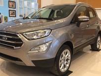 Ford Ecosport, giảm giá tiền mặt, nhận ngay bảo hiểm vật chất và nhiều quà tặng hấp dẫn khác, gọi ngay Xuân Liên