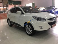 Bán ô tô Hyundai Tucson năm sản xuất 2010, màu trắng, nhập khẩu, giá cạnh tranh