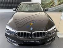 Cần bán BMW 5 Series 520i sản xuất 2019, màu đen, xe nhập