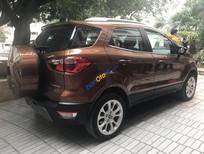 Bán xe Ford EcoSport Titanium 1.5L AT năm 2019