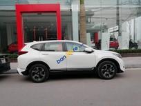 Bán Honda CR V sản xuất 2019, màu trắng, nhập khẩu nguyên chiếc