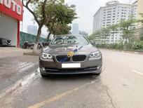 Bán BMW 5 Series 520i sản xuất 2013, màu nâu, nhập khẩu