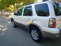Bán Ford Escape sản xuất năm 2005, màu trắng, giá chỉ 215 triệu