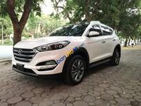 Bán Hyundai Tucson 2.0AT sx 2017, xe nhập