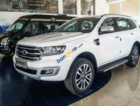 Bán Ford Everest 2.0L Single_Turbo Ambiente MT năm 2019, màu trắng, nhập khẩu, 979 triệu