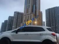 Bán ô tô Ford EcoSport năm sản xuất 2017, màu trắng, nhập khẩu