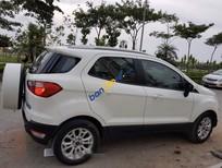 Cần bán Ford EcoSport Titanium sản xuất 2016, màu trắng, xe nhập, giá chỉ 550 triệu