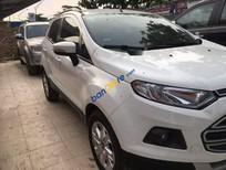 Cần bán Ford EcoSport năm sản xuất 2014, màu trắng số sàn, giá tốt