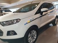 Bán Ford EcoSport Titanium sản xuất năm 2017, màu trắng, giá tốt