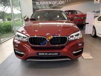 Bán BMW X6 sản xuất 2019, màu đỏ, xe nhập