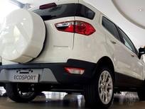 Ford Ecosport tiện dụng cho thành thị