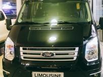 Ford Transit, Limousine giải pháp kinh doanh dịch vụ