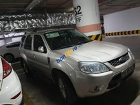 Bán Ford Escape sản xuất 2013, màu bạc