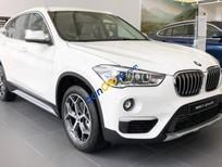 Bán BMW X1 năm 2019, màu trắng, nhập khẩu nguyên chiếc