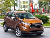 Cần bán Ford EcoSport 1.5L MT Ambiente sản xuất 2019 giá cạnh tranh