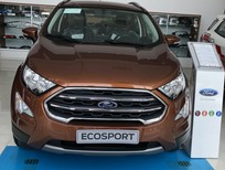 Cần bán Ford EcoSport Ambient sản xuất năm 2019, màu nâu
