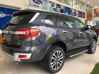 Bán ô tô Ford Everest Titanium 4x4 Bi-Turbo sản xuất năm 2019, màu xám, xe nhập