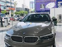 Bán BMW 530i sản xuất năm 2019, màu nâu, xe nhập