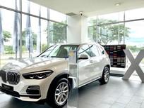 Bán xe BMW X5 năm sản xuất 2019, màu trắng, nhập khẩu