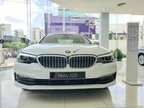 Bán ô tô BMW 5 Series sản xuất 2019, màu trắng, xe nhập