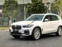 Bán BMW X5 năm sản xuất 2019, màu trắng, nhập khẩu nguyên chiếc