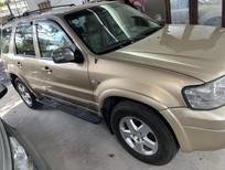Cần bán xe Ford Escape 2.3 2005, màu vàng cát, số tự động