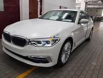 Bán ô tô BMW 5 Series 530i sản xuất 2019, màu trắng, nhập khẩu nguyên chiếc