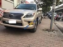 Bán Lexus LX sản xuất 2014, màu vàng, xe nhập