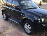 Bán xe Ford Escape năm sản xuất 2007, màu đen