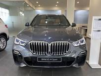 BMW X5 xDrive40i M Sport 2020 new 100%, nhập khẩu Châu Âu, 5 chỗ, BMW Đắk Lắk