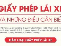 Những điều cần biết về các loại giấy phép lái xe tại Việt Nam