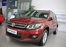 Bán Volkswagen Polo E 2015, màu đỏ, xe Đức nhập khẩu nguyên chiếc
