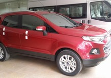 Bán xe Ford EcoSport đời 2016