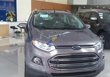 Cần bán Ford EcoSport model 2017 Titanium 1.5, màu nâu giá cực rẻ, hotline 0942552831