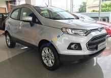 Bán xe Ford EcoSport Titatium sản xuất 2017, đủ mầu giao ngay