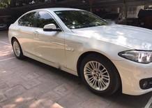 Bán xe BMW 5 Series 520 năm 2015, màu trắng, nhập khẩu nguyên chiếc