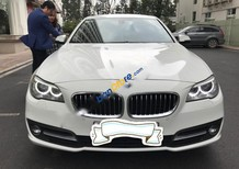 Cần bán lại xe BMW 5 Series 520i sản xuất 2015, màu trắng, xe nhập