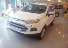 Bán Ford EcoSport Trend MT 1.5 năm 2017, màu trắng, giá 538tr
