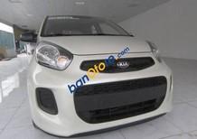 Cần bán Kia Morning 1.0 Van năm sản xuất 2016, màu trắng, nhập khẩu