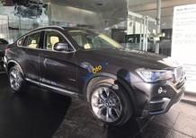 Bán BMW X4 xDrive 20i sản xuất 2017, màu xám, xe nhập